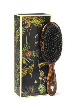 Fan Palm - Hair Brush Turtle Medium
